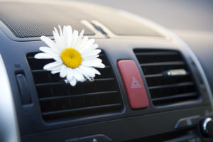 Close-up view of the air conditioning vents in a car, one of which has a flower on it.