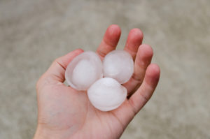 Close-up of a hand holding large hail stones.